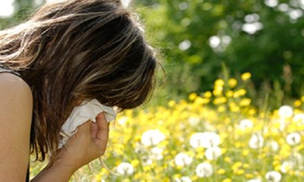 Allergy Survival Guide: 7 Tips on How to Survive Allergies This Year