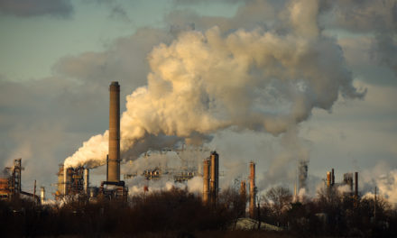How Can Air Pollution Cause Brain Problems?