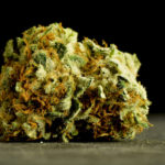 Your Teen's Brain and Marijuana